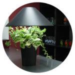 Lumipouss décoration hôtel restaurant comptoir accueil